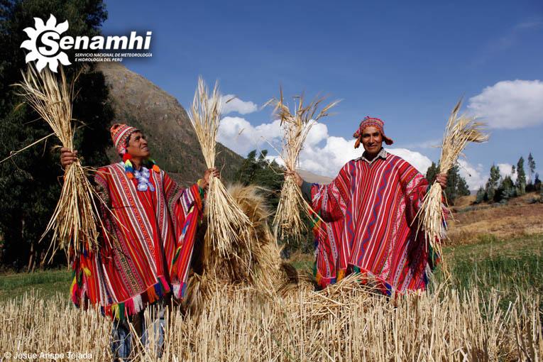 cusco la agricultura sitio web de citas